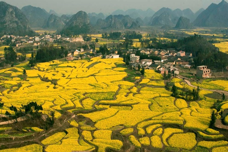 Efforts on to lift Guangxi's ethnic tribes from poverty