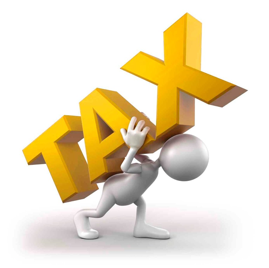 China's tax burden below world average: official