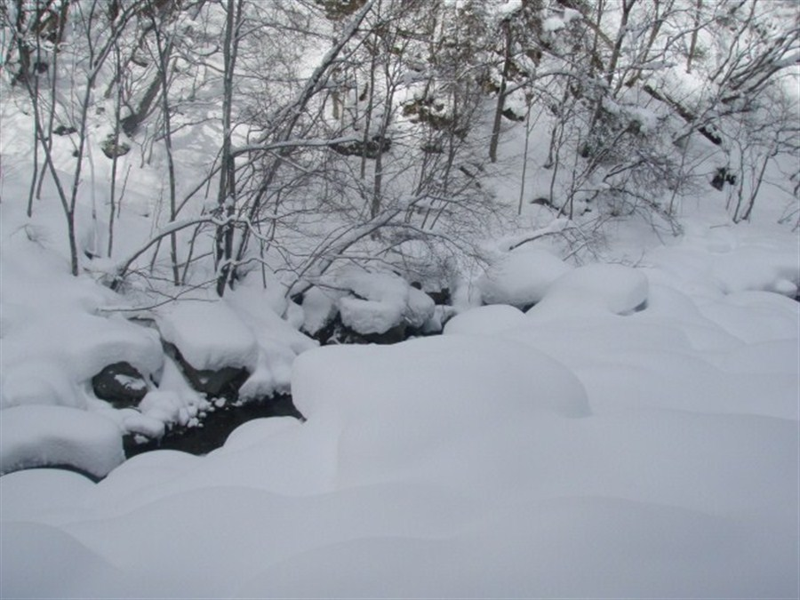 6 students hit by avalanche found no breathing in Japan's Tochigi