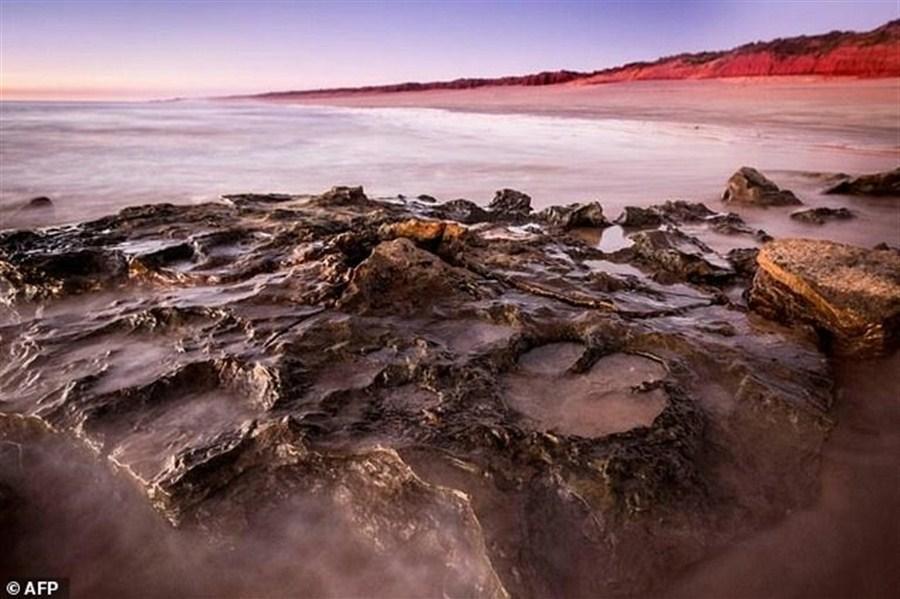 Most diverse dinosaur tracks found in Australia
