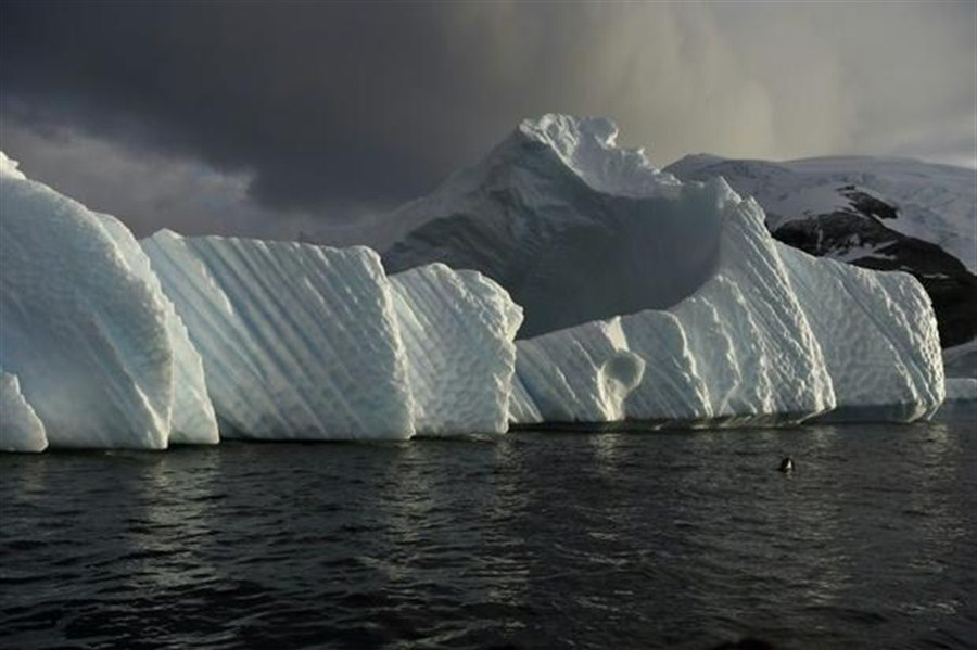 Polar areas hold key to risk control on climate