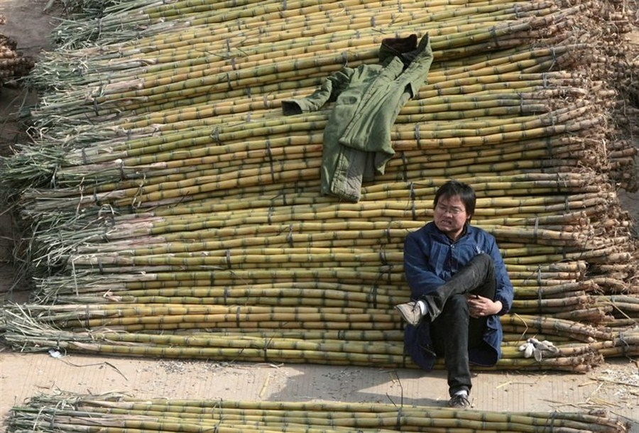 China slaps 3-year duties on sugar imports