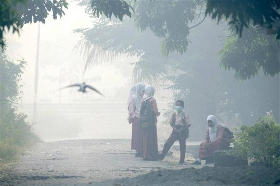 Dozens hospitalised in Indonesia as thick haze spreads