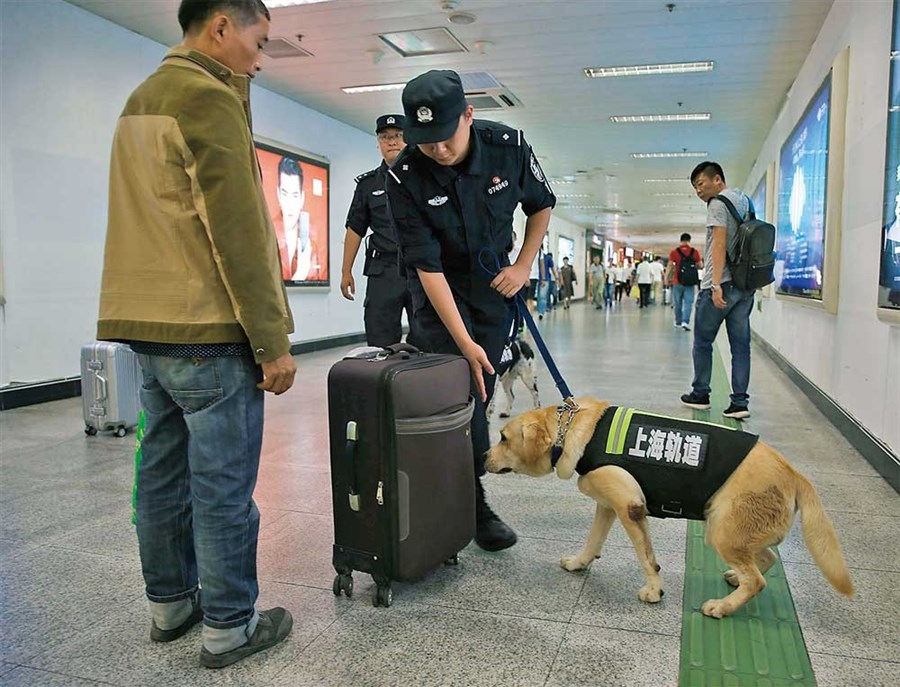 Sniffer dogs to be kept busy during chunyun