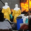 Ebola hits 5th WAfrican state as Senegal confirms first case