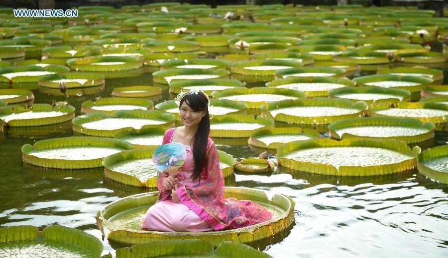 Aquatic Plants Exhibition Attracts Visitors At Shuangxi