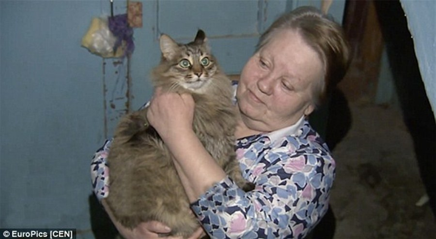 Stray cat saves Russian baby abandoned in freezing hallway by keeping him warm