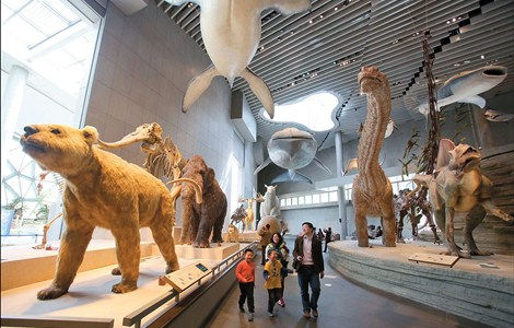A family enjoys a sneak preview of the new Shanghai Natural History Museum