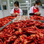 Int'l crayfish festival held in Xuyi, China's Jiangsu