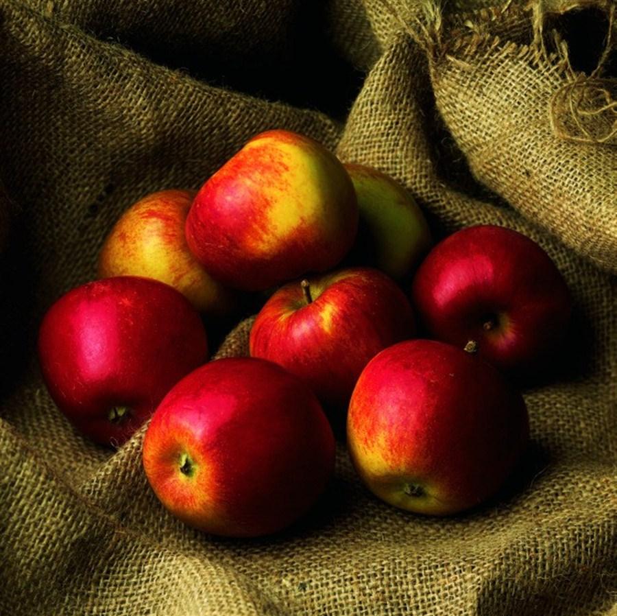 Условия хранения яблок в домашних условиях 932