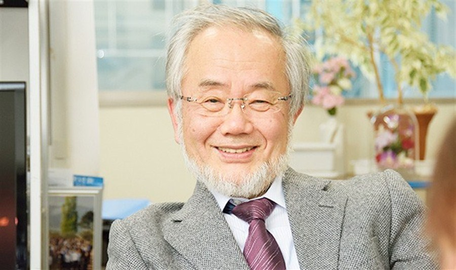 Japan's Ohsumi wins Nobel Medicine Prize for work on cell 'recycling'