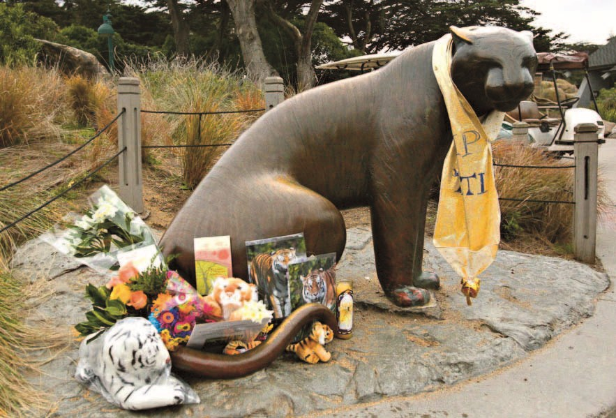 A memorial site at San Francisco Zoo honors a Siberian tigress named Tatiana, which was shot dead after fatally mauling a man in 2007.