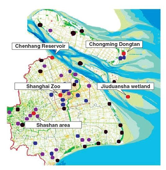 An early-warning alert system for avian flu in Shanghai relies on sampling and test data from 58 monitoring stations.