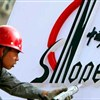Sinopec's net profit rises for 1st time in 3 years
