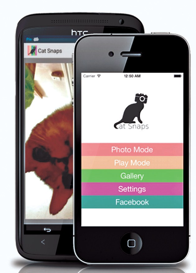 Cat Snaps, a widely popular app, sets up selfies for cats.