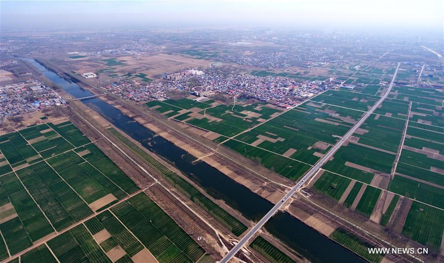 Aerial photo taken on April 1, 2017 shows farmland in Rongcheng County, north China\'s Hebei Province. China announced Saturday it would establish the Xiongan New Area in Hebei Province, as part of measures to advance the coordinated development of the Beijing-Tianjin-Hebei (BTH) region. The New Area, about 100 km southwest of downtown Beijing, will span three counties that sit at the center of the triangular area formed by Beijing, Tianjin and Hebei\'s provincial capital Shijiazhuang.