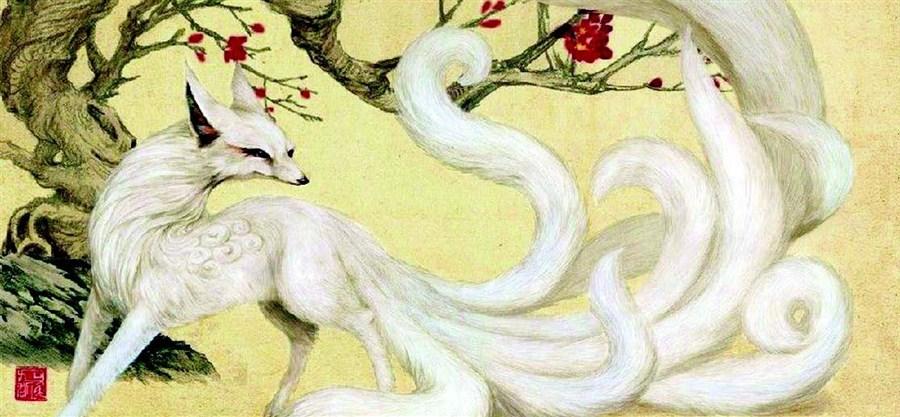 Magical nine-tail fox