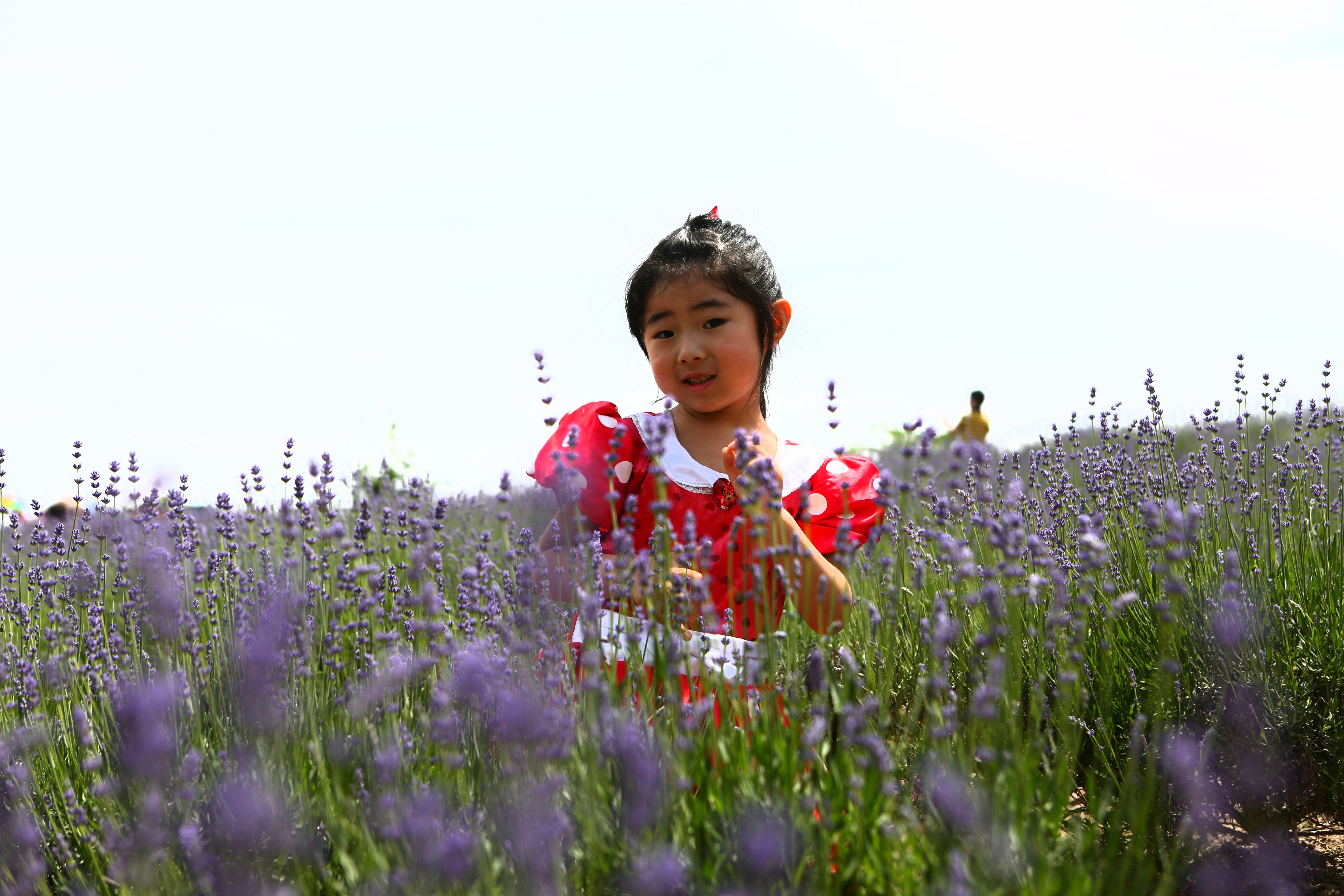 A girl poses for photo at the Momchilovtsi Herb Garden in Shanghai International Tourism and Resorts in Pudong New Area today, the 7th National Tourism Day. The garden which opened today and offered free admission to mark the National Tourism Day has to slow the inflow of tourists as they swarmed the place. A total of 75 scenic spots and museums in the city offer half-priced admission today. -- Jiang Xiaowei
