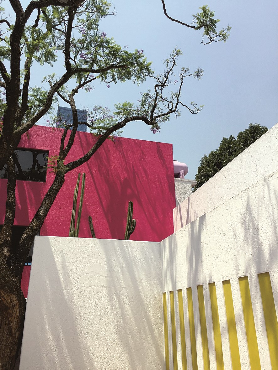 The old Jacaranda tree was kept so Barragan could design the house around it.