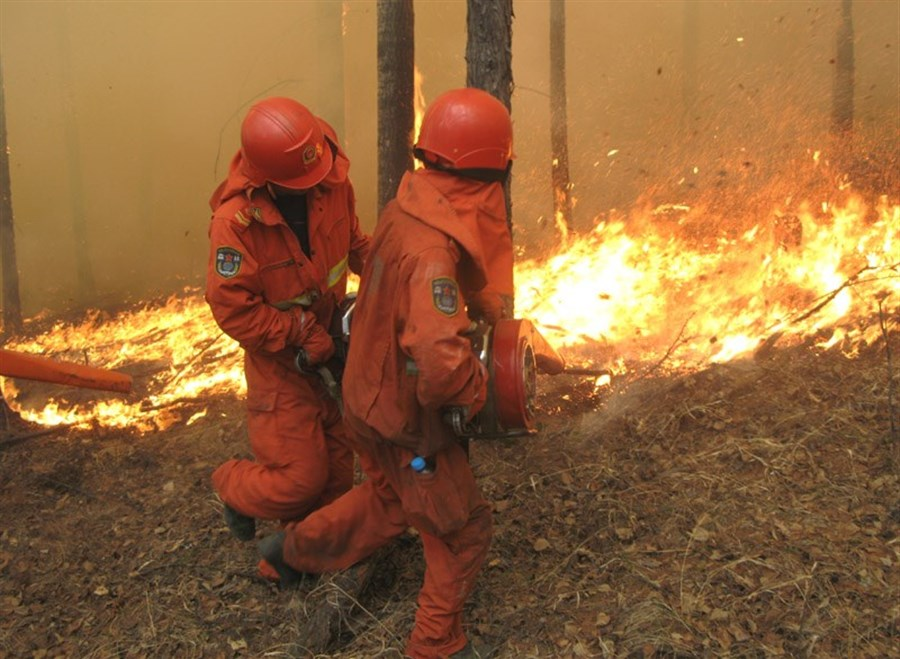 Inner Mongolian forest fire extinguished