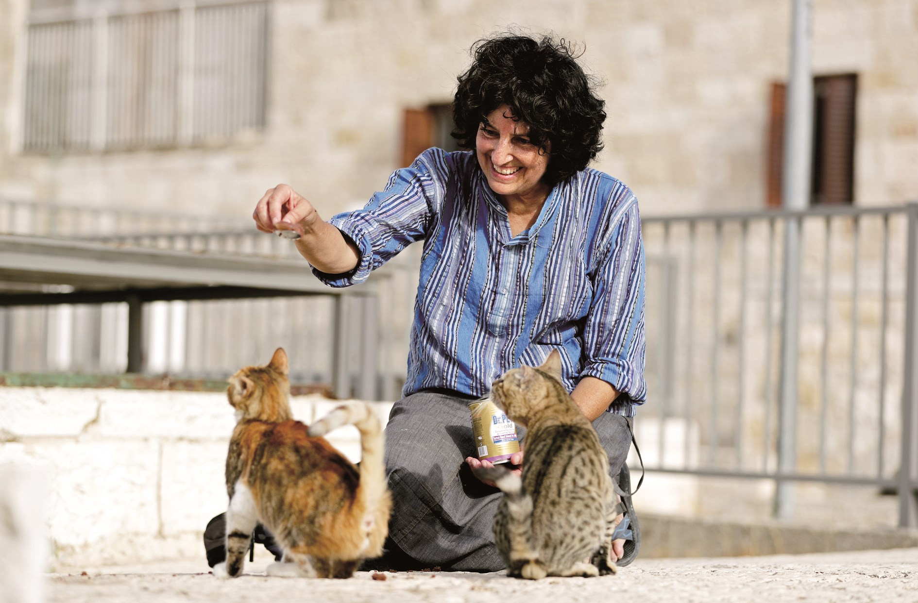 "Tova Saul, an Orthodox Jew, feeds stray cats in a neighborhood in Jerusalem's Old City. For more than two decades Tova has fed and cared for hundreds of cats, earning the informal title of the walled Old City's ""cat lady."" — AFP"