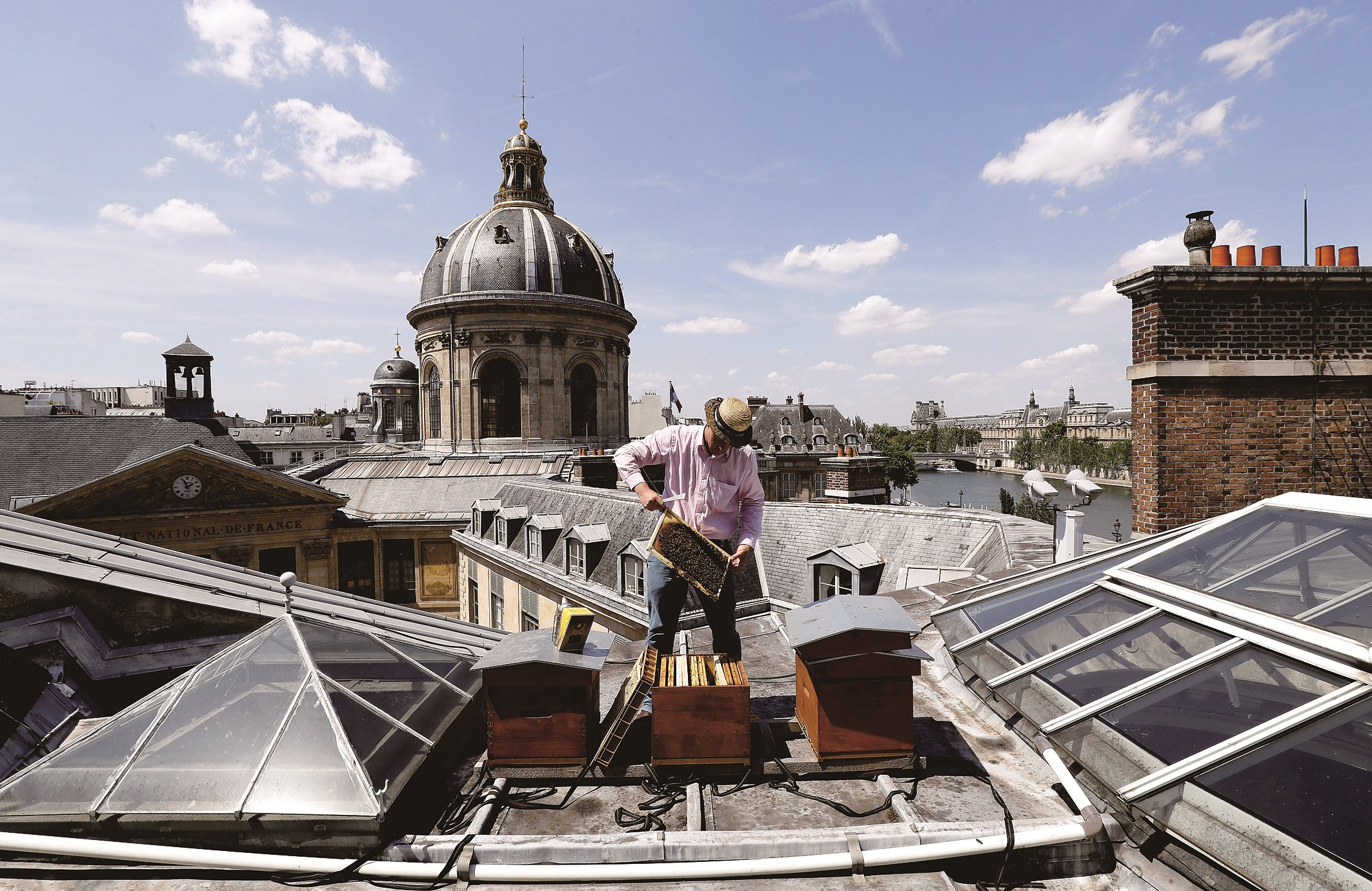 French beekeeper Audric de Campeau checks his beehives set on the roof of The Mazarine Library at The French Institute in Paris. To check the beehives he has set up on the roof of the sprawling Monnaie de Paris, on the banks of the River Seine, Audric de Campeau slips on a harness over his trousers for safety. — AFP