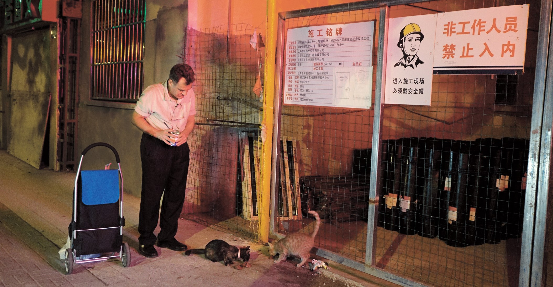 Mekaiel Shirazi, who has lived in China for 20 years, has kept feeding stray cats in Xujiahui for the past six years. — Wang Haoling