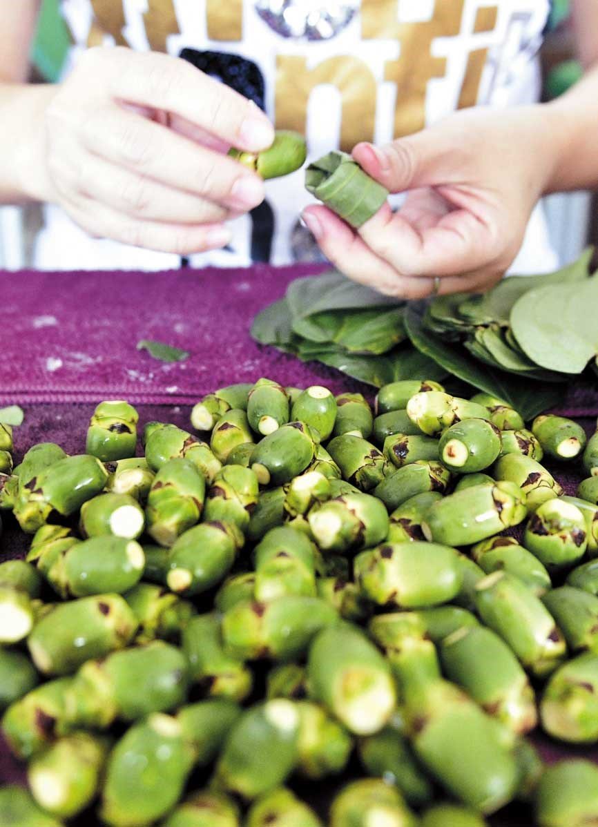A woman wraps betel nuts into leaves in Nantou, central Taiwan. Since a 2003 study confirmed betel nut as a carcinogen there has been a gradual decline in popularity. — AFP